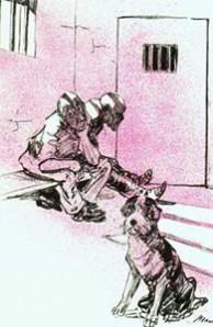 Dog in prison